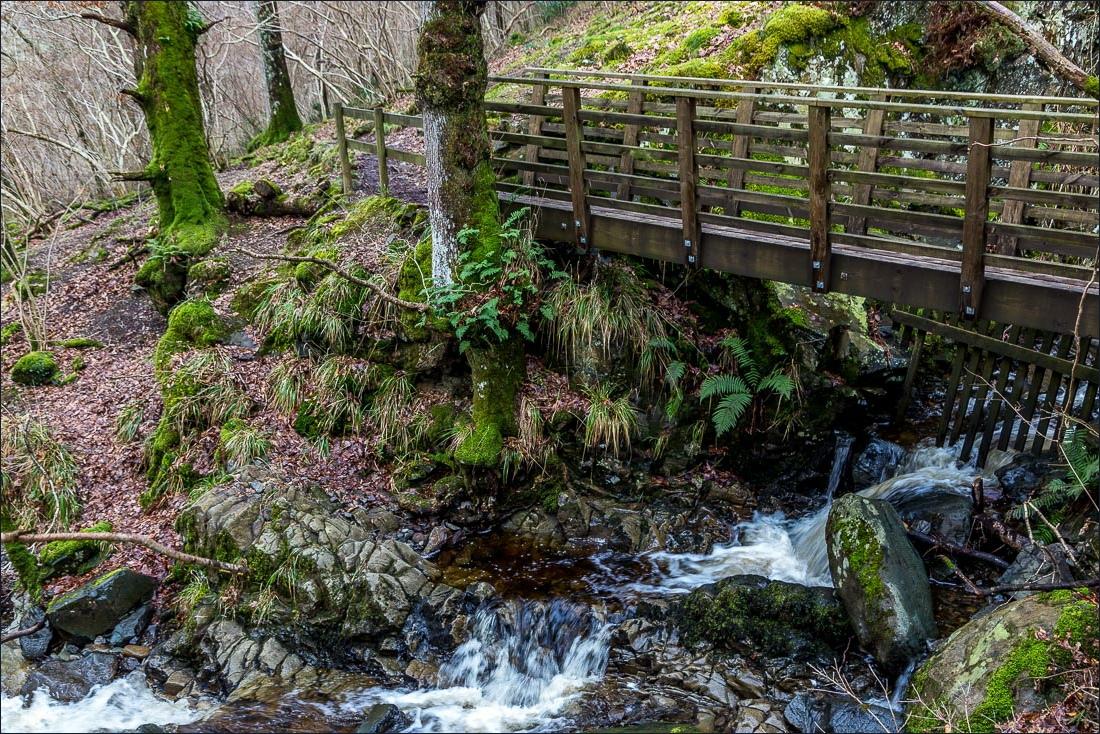 Falcon Crag walk, Borrowdale walk