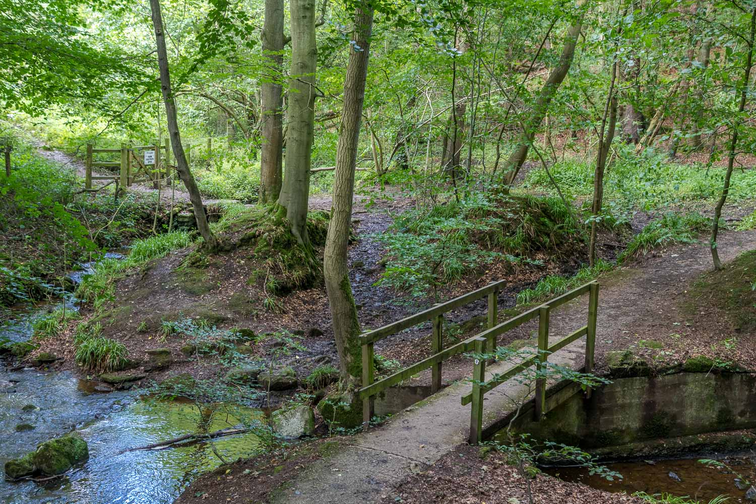 Corbridge walk, Aydon Castle walk, Cor Burn