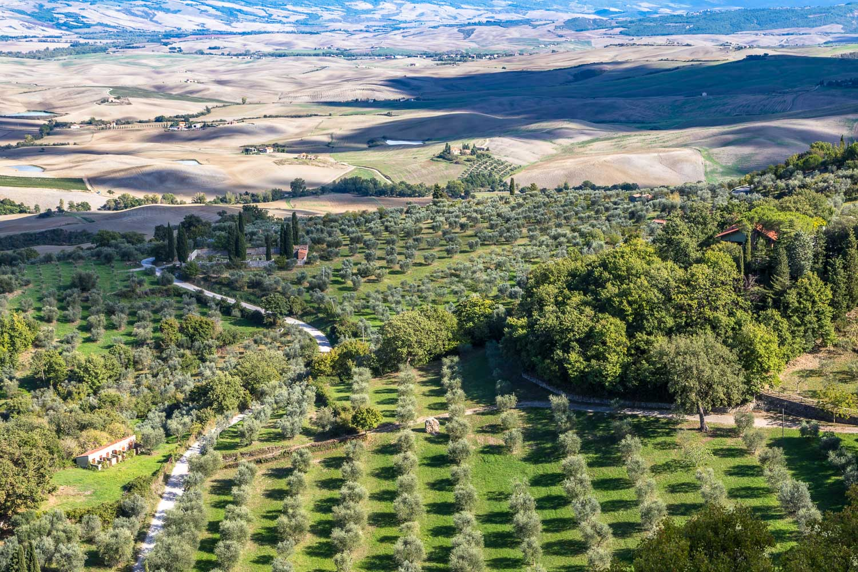 Rocca d'Orcia, Rocca di Tentennano