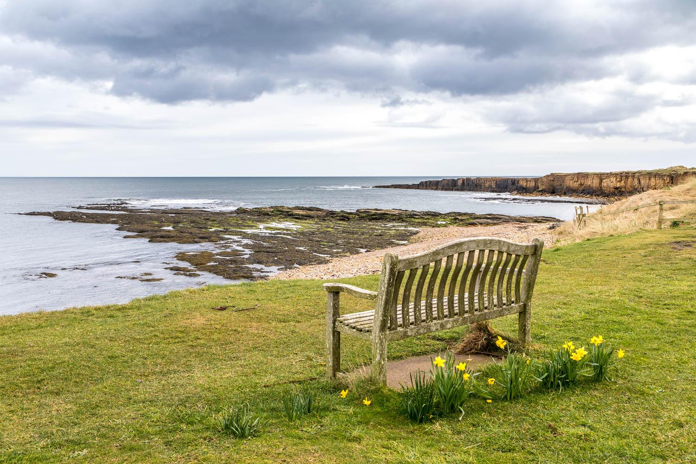 Beadnell, bench