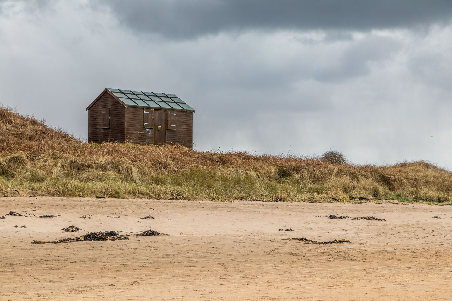 Beadnell to Craster walk