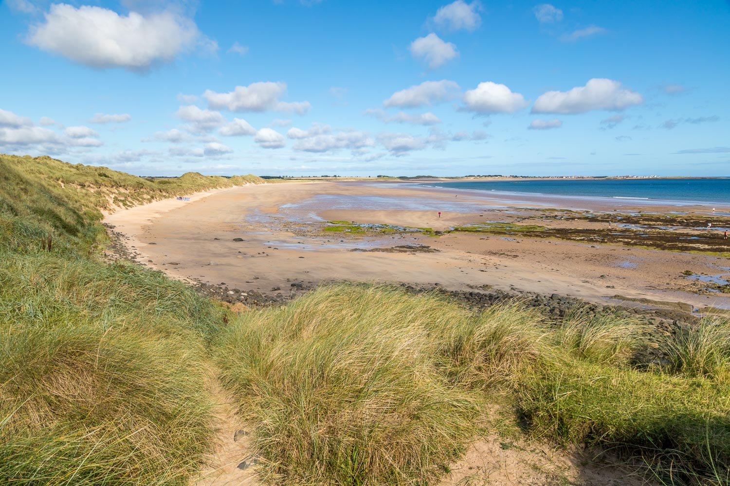 Beadnell walk, Snook Point