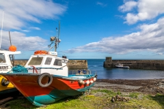 Craster Harbour