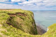 Bempton Cliffs walk