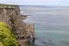 Bempton Cliffs RSPB
