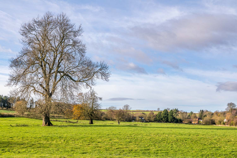 Stainton le Vale