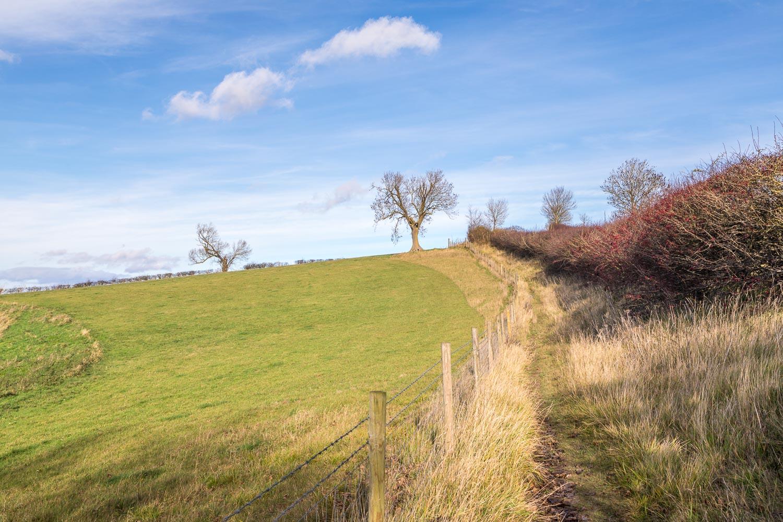 Binbrook walk