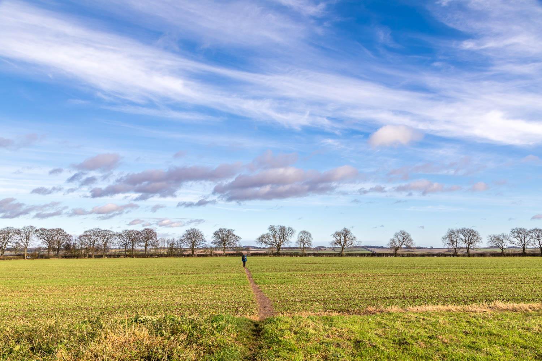 Binbrook walk, big skies
