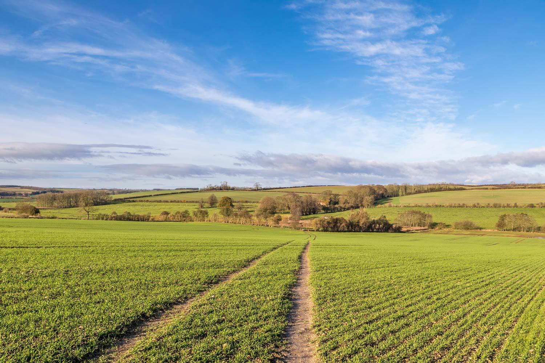 Binbrook walk, Orford