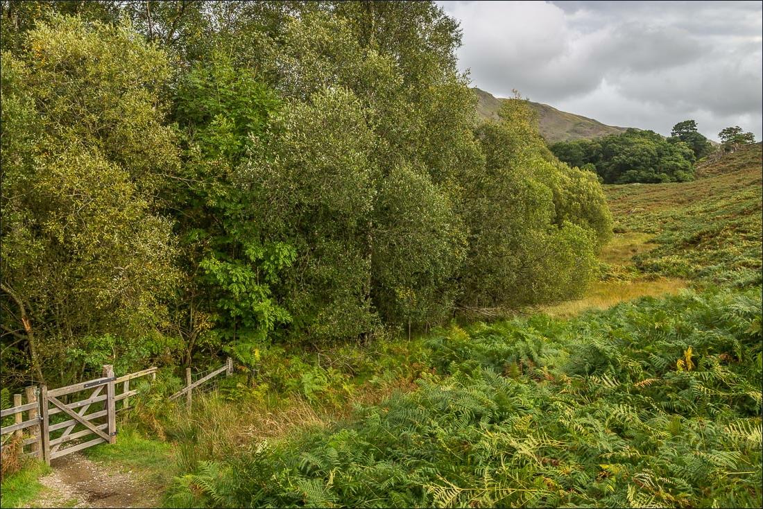 Birks walk, Arnison Crag walk