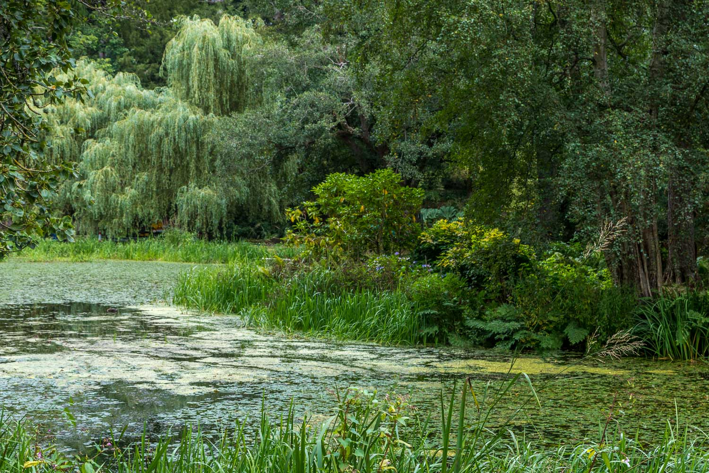 Skating Pond, Far End, Bodnant Garden