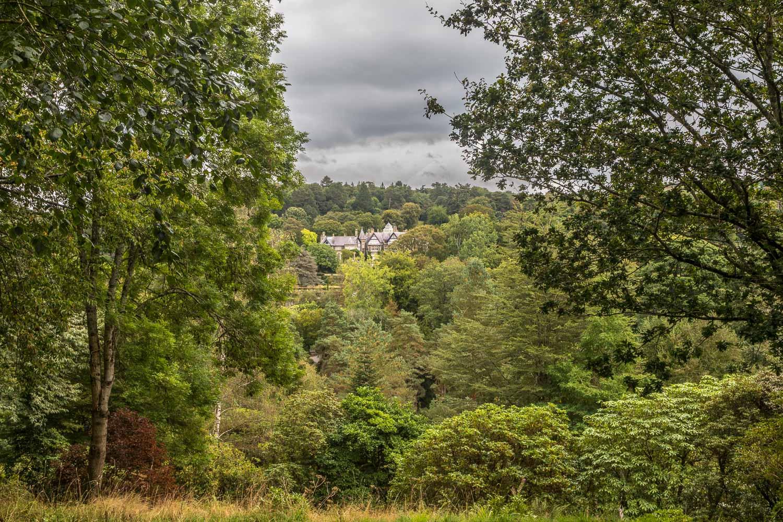 Bodnant Garden, Furnace Wood