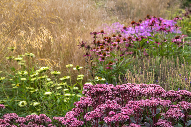 Bodnant Garden Winter Garden