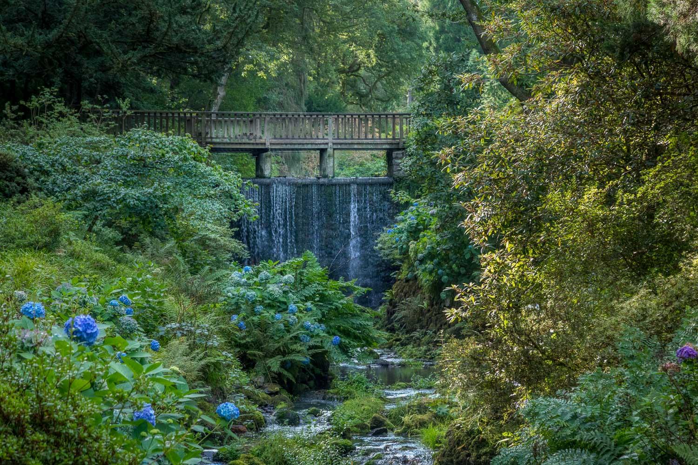 Waterfall Bridge, Bodnant Garden