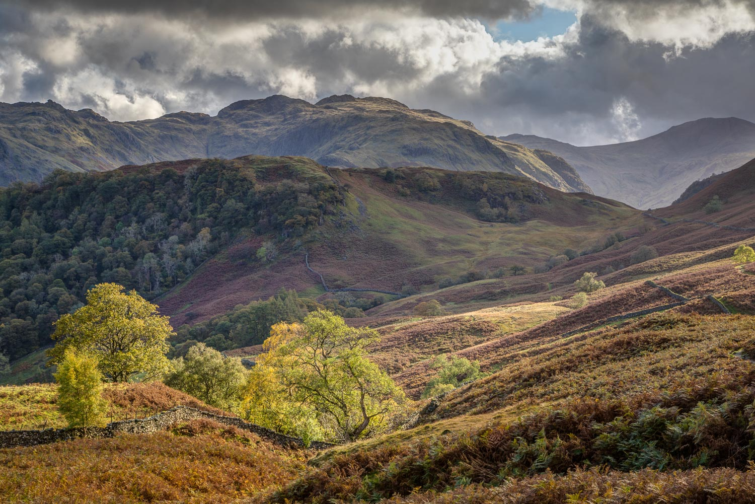 Borrowdale fells, High Doat