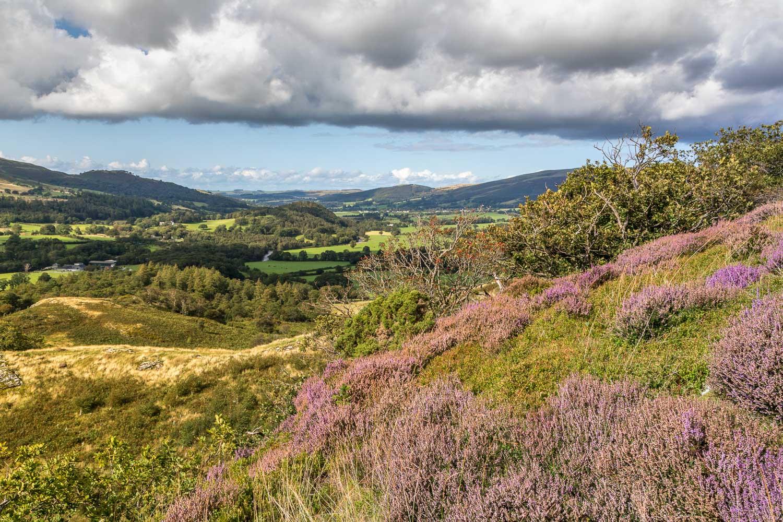 Brackenthwaite Hows walk, Lanthwaite Hill, Lorton Vale