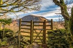 Brackenthwaite Hows walk, Lanthwaite Hill walk