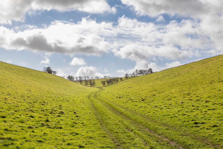 Brantingham walk, High Hunsley Circuit, Swin Dale
