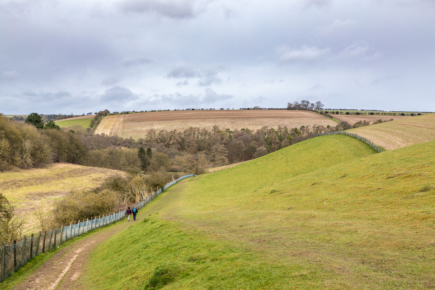 Comber Dale