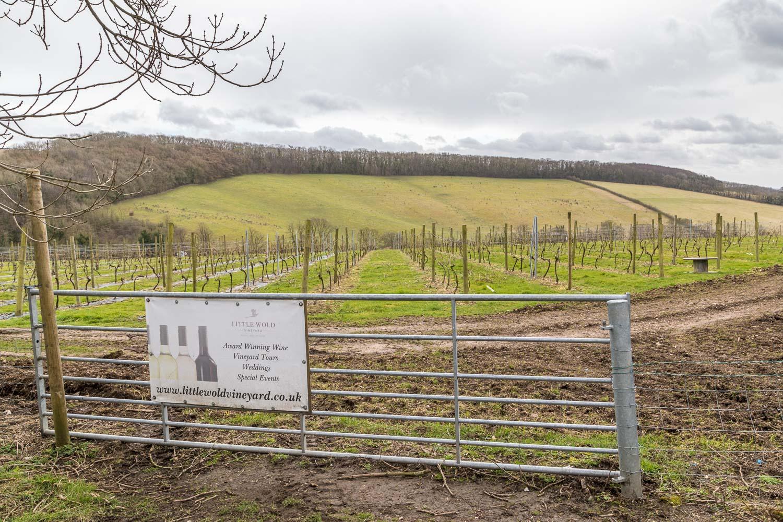 Little Wold Vineyard
