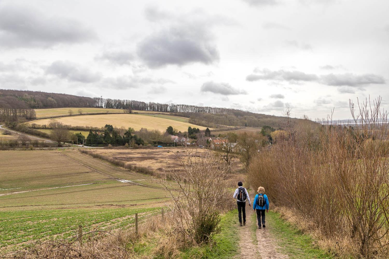 Brantingham walk, South Cave