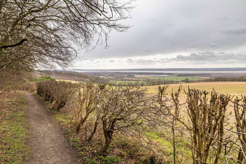 High Hunsley Circuit, view of Humber