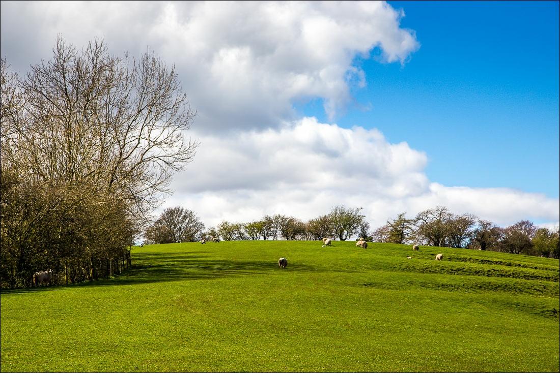 Brough Castle-28