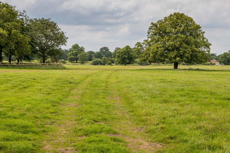 Burton Constable walk