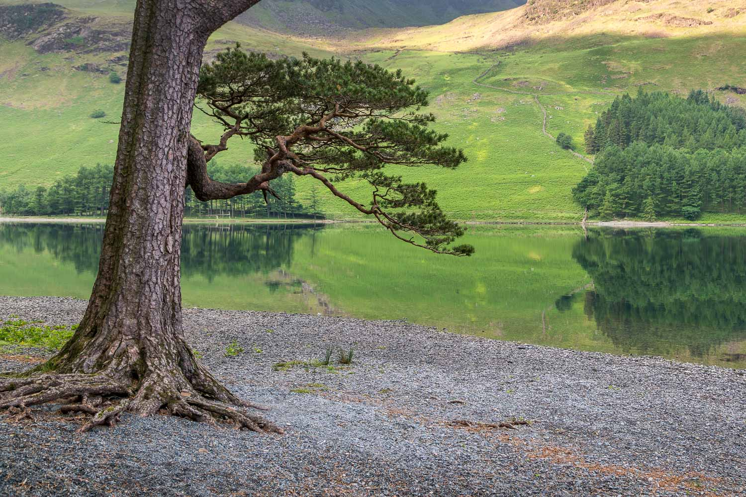 Buttermere-17-44