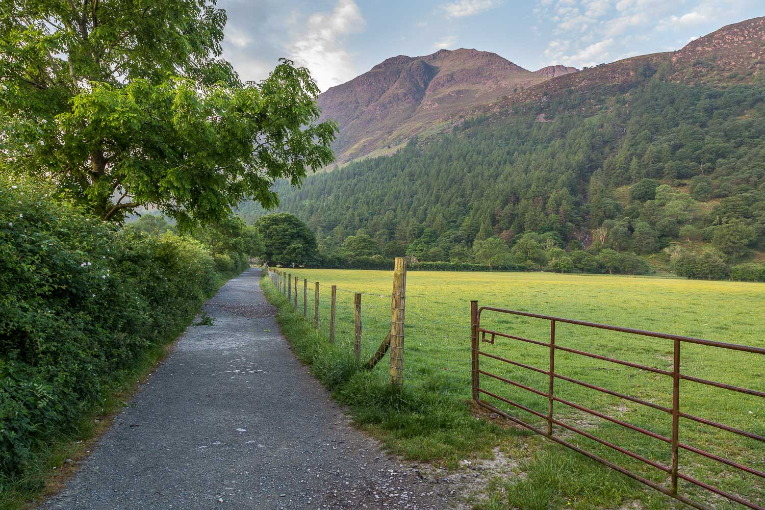 Buttermere-17-9