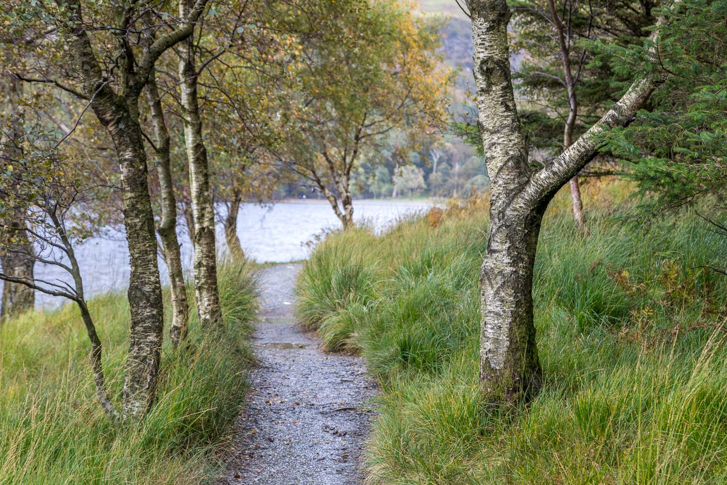Buttermere-18-16