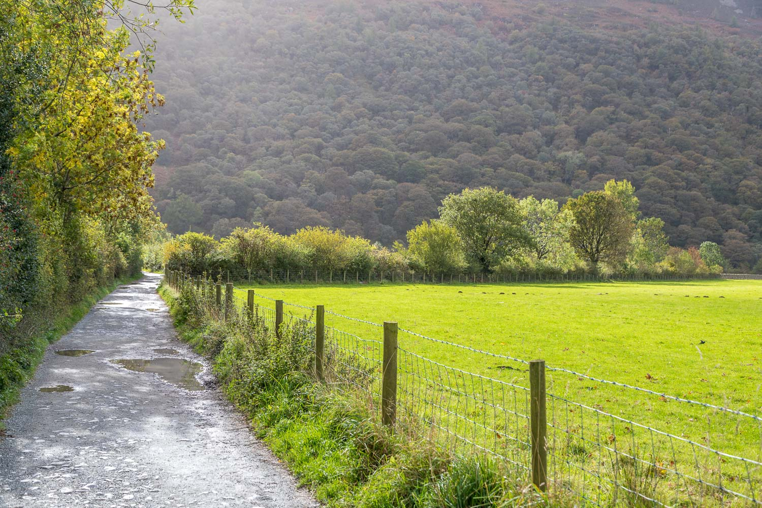 Buttermere-18-5