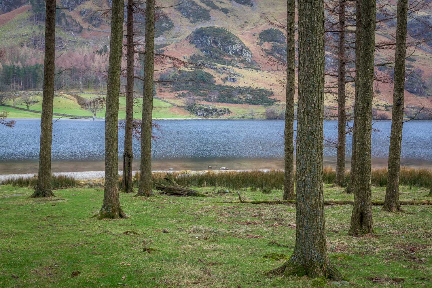 Buttermere, Horse Close, Muddock Crags