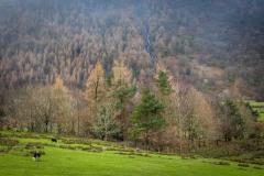 Old Burtness, Sourmilk Gill waterfall