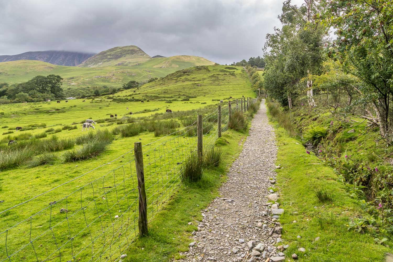 Buttermere walk