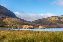 Crummock Water, Holme Islands, Scale Knott