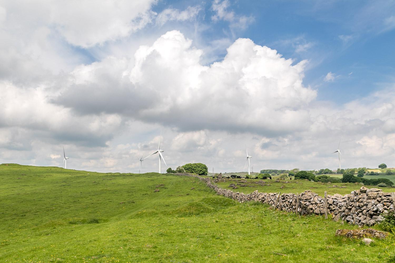Carsington Pasture