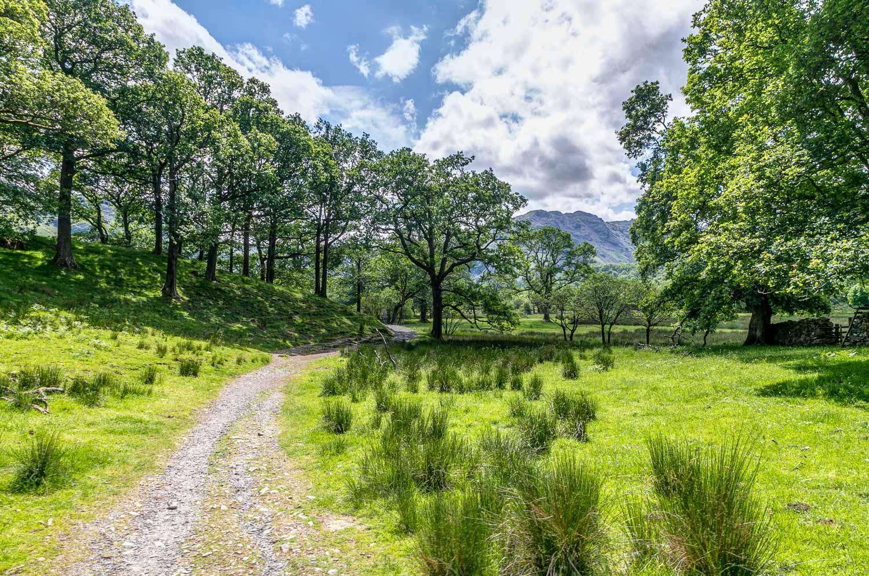 Borrowdale walk, Cumbria Way