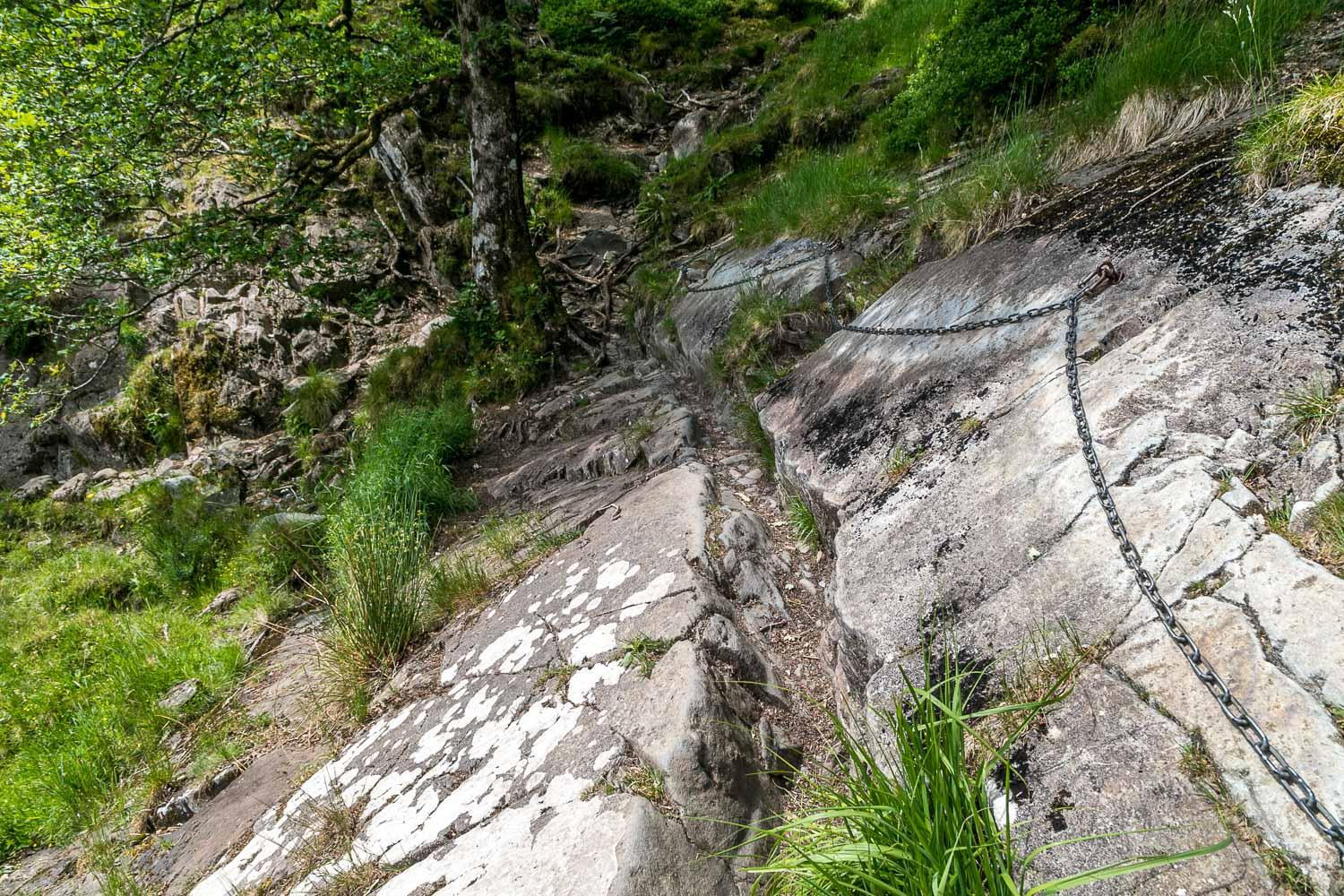River Derwent walk, chain