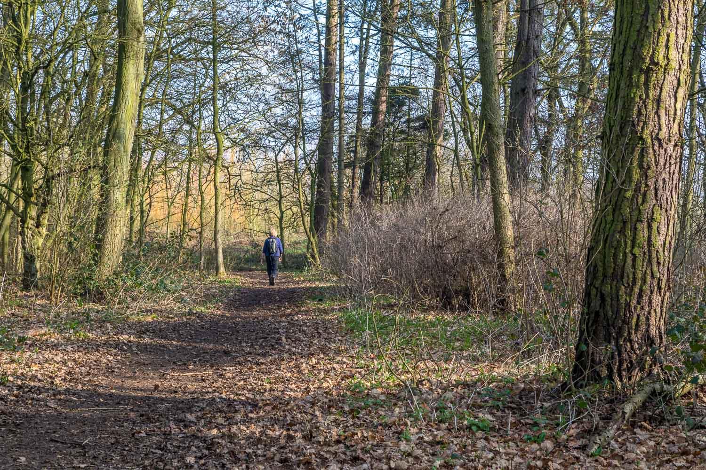Chalkland Way, Pocklington Wood