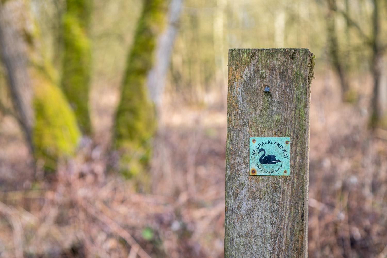 Chalkland Way, Grimthorpe Wood