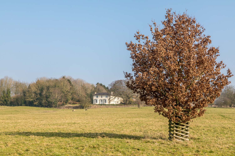 Chalkland Way, Grimthorpe Manor