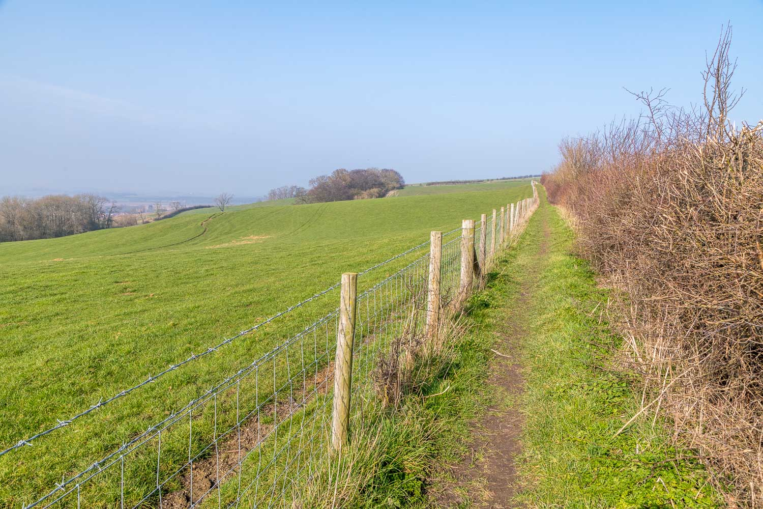 Chalkland Way, South Cliff