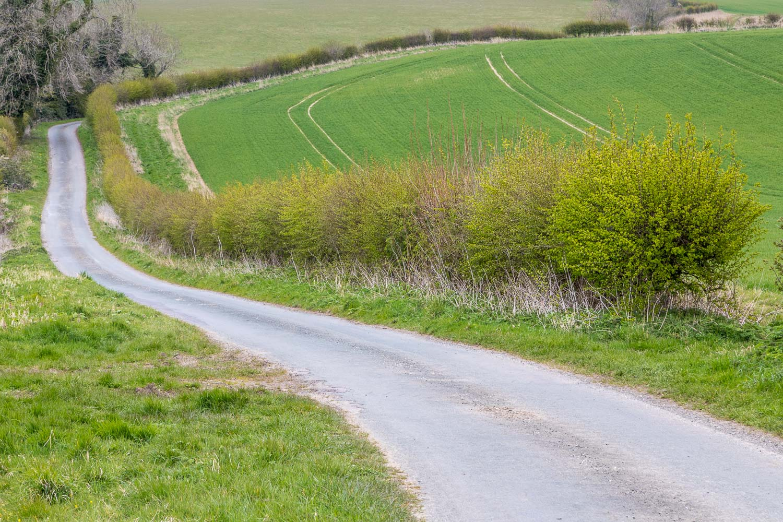 Chalkland-Way-2-18