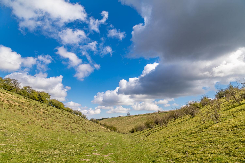 Chalkland Way, Milham Dale