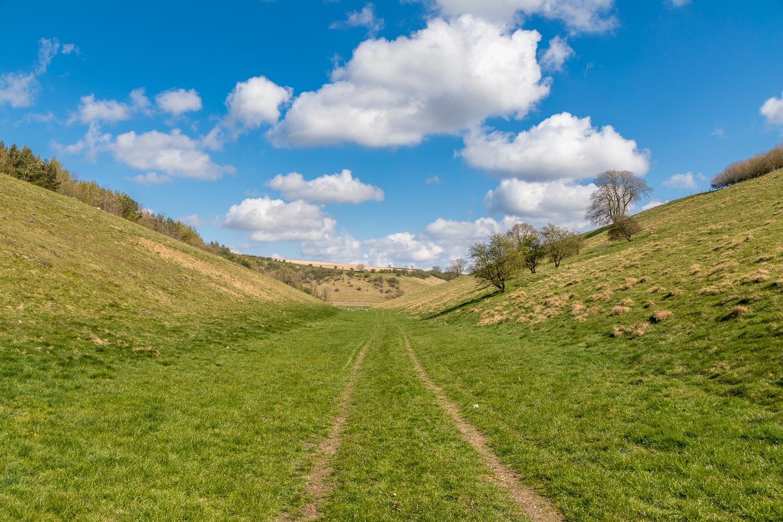 Chalkland-Way-2-45