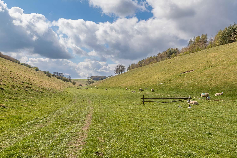 Chalkland Way, Thixendale