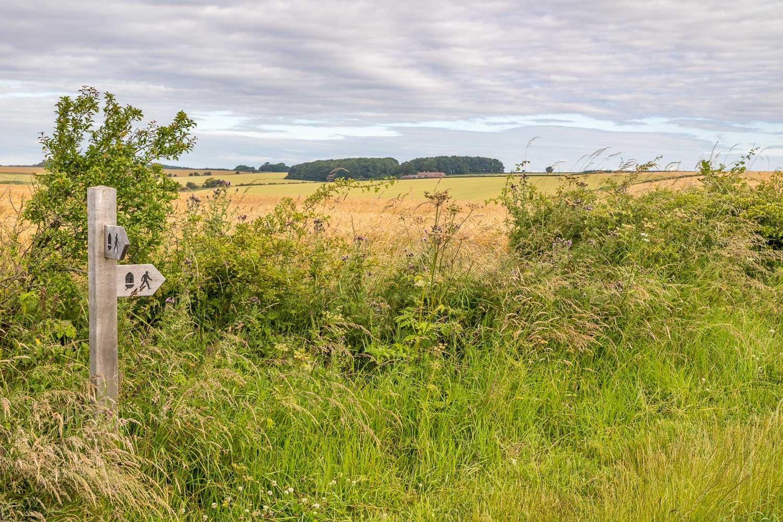 Chalkland Way, Wolds Way