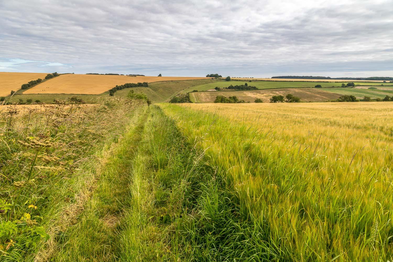 Chalkland Way, Vessey Hill