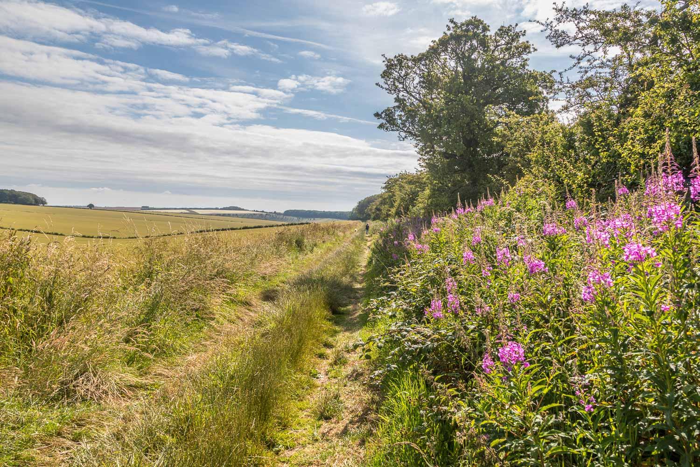 Chalkland Way,  North Plantation